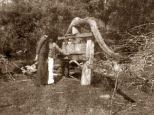 Nesta foto de 1978 um dos últimos torchios feito por ele ainda em funcionamento na casa da tia Eulália.