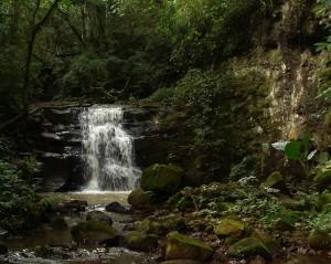 Cachoeira do perau